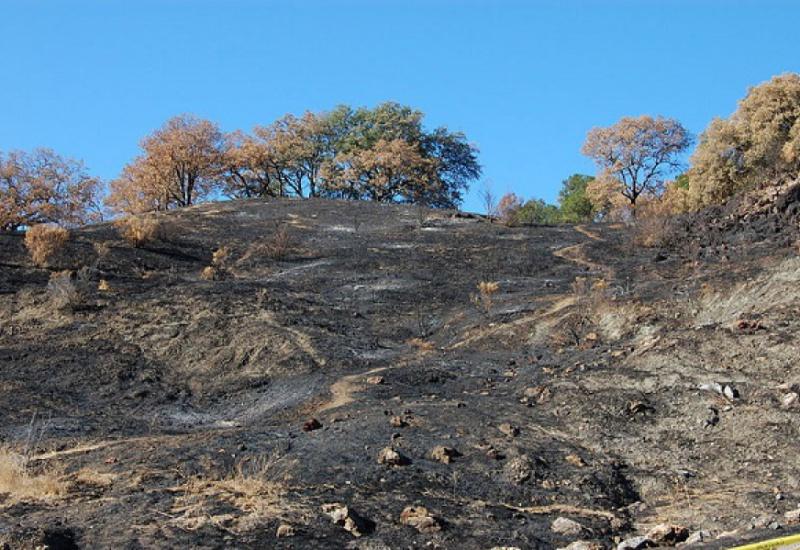 Καλιφόρνια: Στους 48 οι νεκροί από την πυρκαγιά